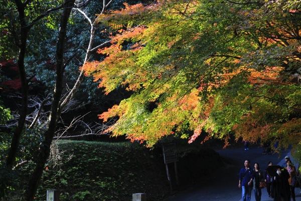京都今熊野観音寺紅葉観光スポット混雑002.jpg