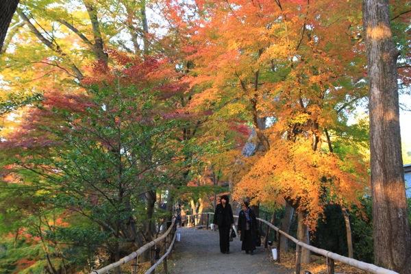 京都観光北野天満宮紅葉010.jpg