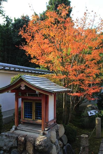 京都霊雲院紅葉観光スポット005.jpg