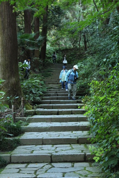 鎌倉瑞泉寺アクセス見どころおすすめ14.jpeg