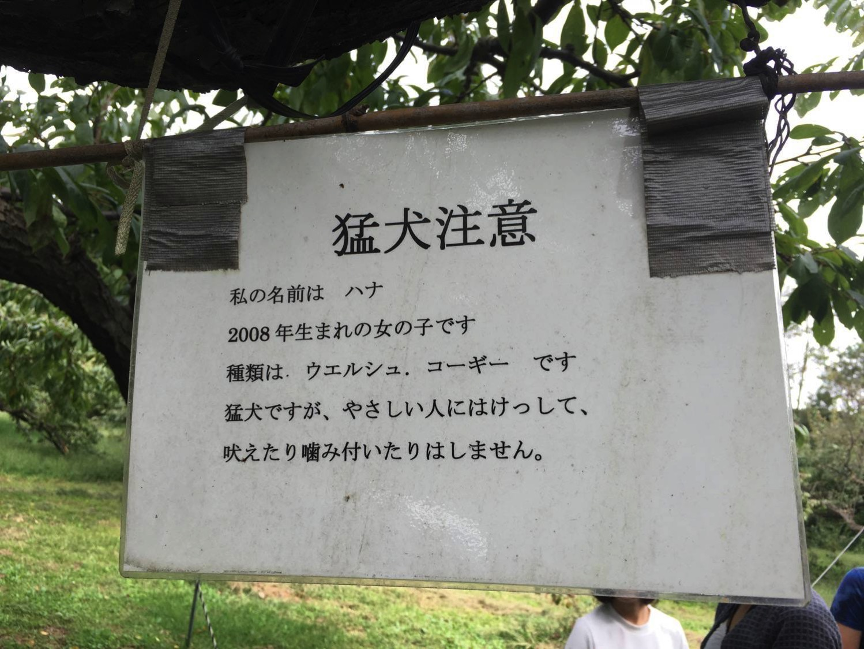 Kyouhudoukutu3