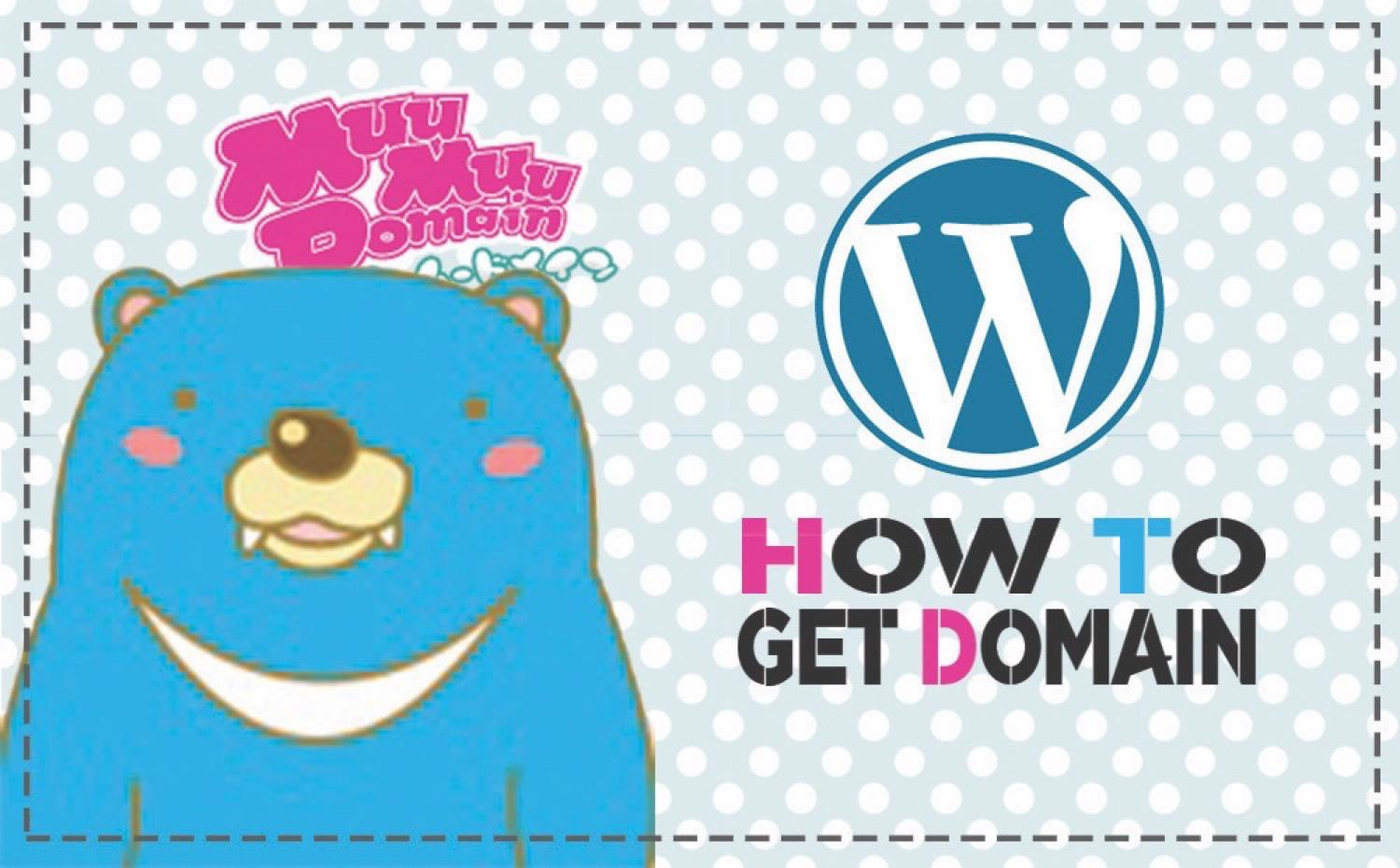 Wordpress domain2
