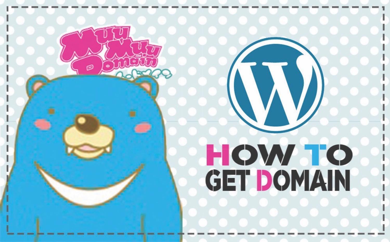Wordpress domain2