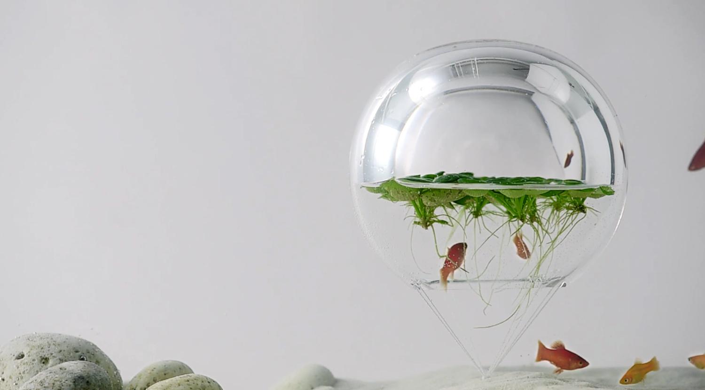 Minimal aquarium8