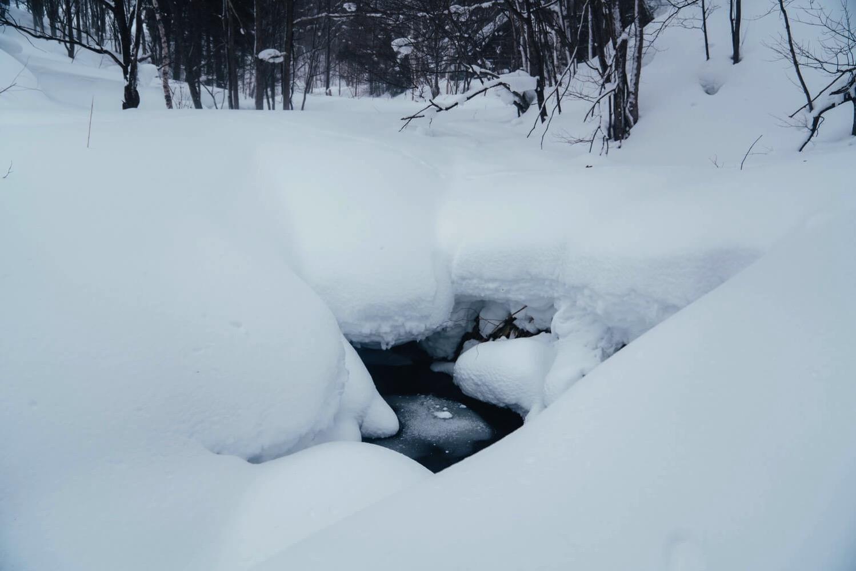 下川町雪の中