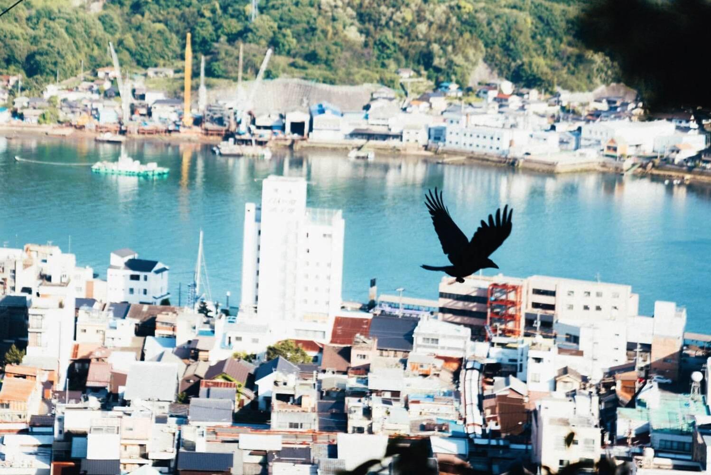 たけさんぽ広島0043