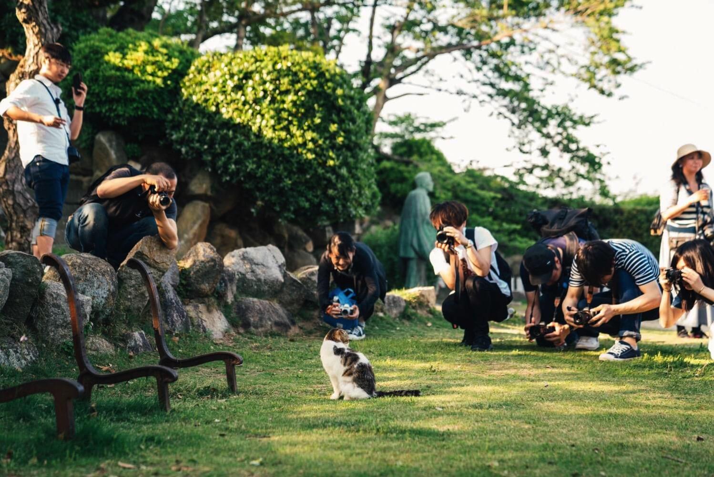 たけさんぽ広島0047