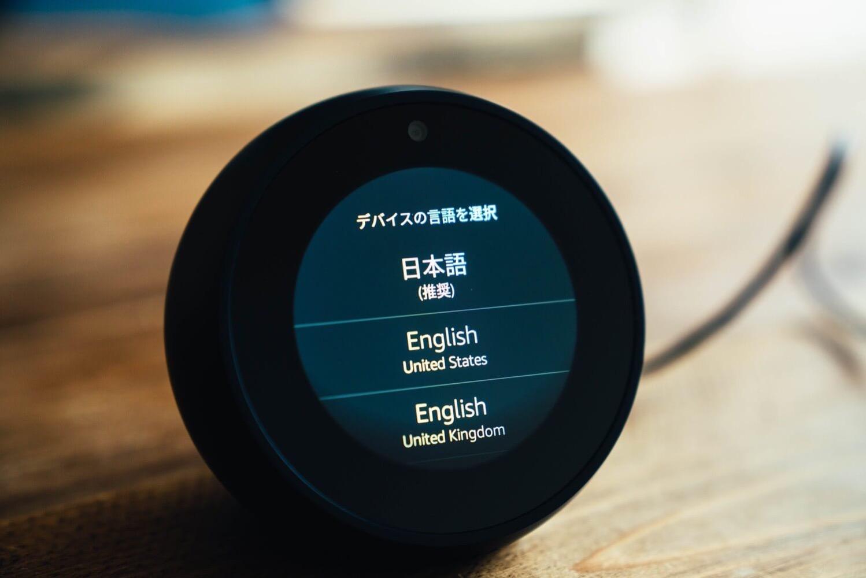 Echospot 0008